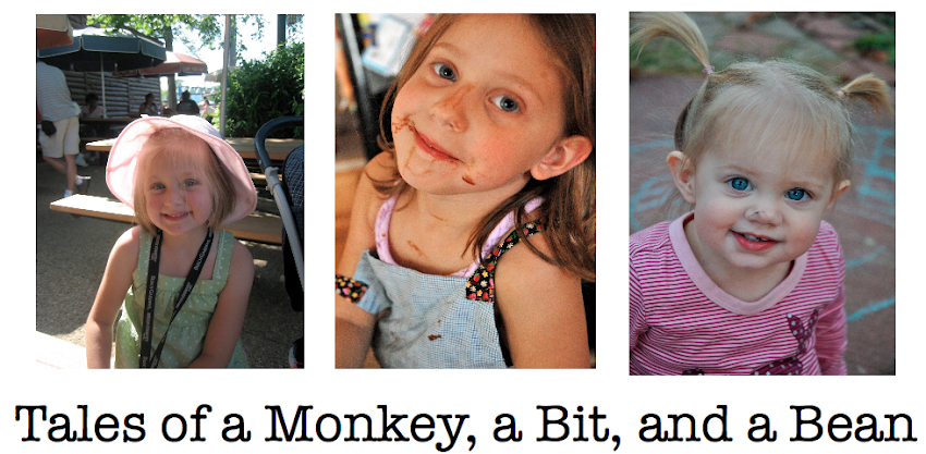 Tales of a Monkey, a Bit, and a Bean